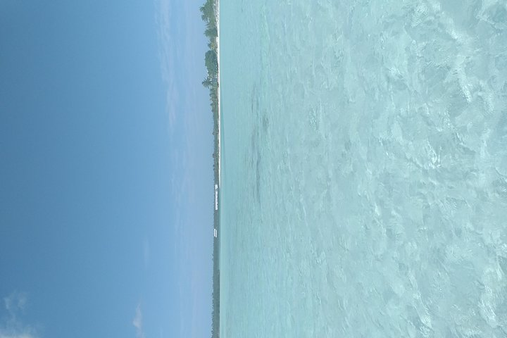 Excursión por la costa de Freeport: Kayak en Turtle Park, Freeport, BAHAMAS