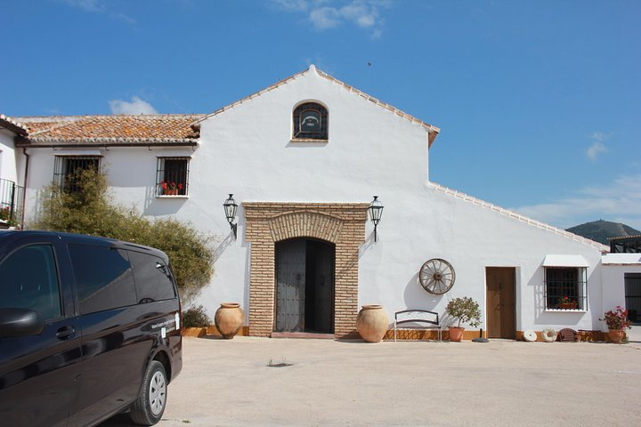 Olive oil and Mountains Route - Small group, oil tasting and lunch included, Malaga, ESPAÑA