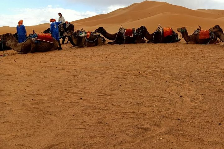3 Days 2 Nights: Desert Tour from Fes to Marrakech, Fez, MARRUECOS