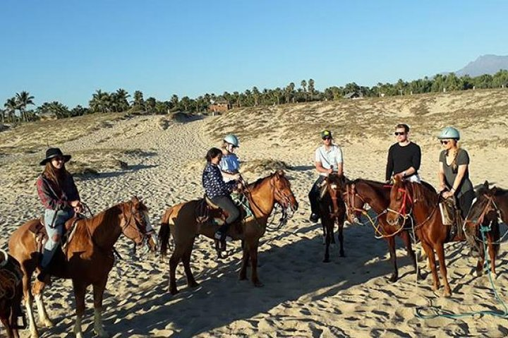 Horseback riding, ,