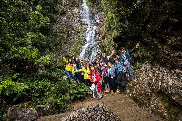 5-Day Lap of Tasmania Tour from Hobart (flexible ticket), Hobart, AUSTRALIA