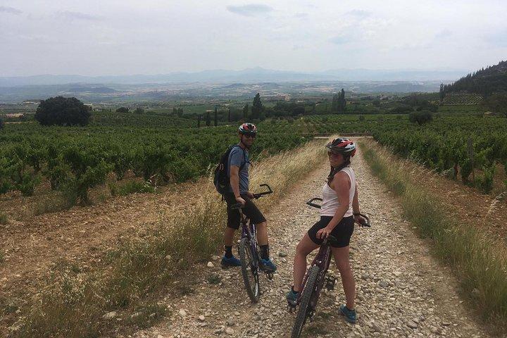 Rioja Alavesa: Cycling experience with wineries, La Rioja, ARGENTINA