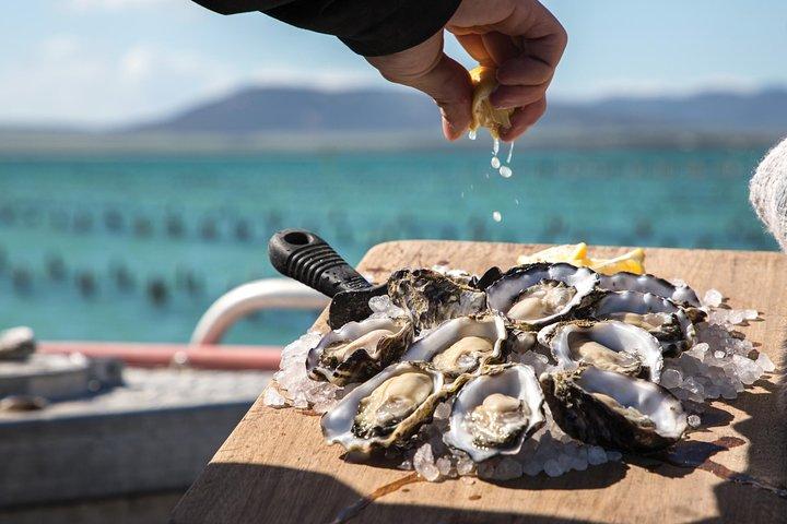 Experience Coffin Bay Oyster Farm and Bay Tour, Port Lincoln, Austrália