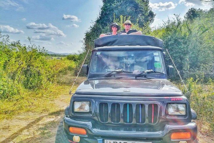 Jeep Safari at Kaudulla National Park, Sigiriya, SRI LANKA