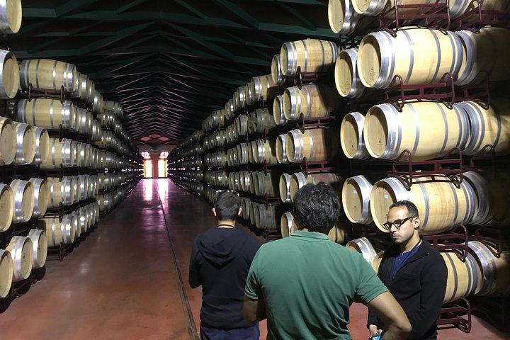 Wine and Cava day trip from Zaragoza, Zaragoza, ESPAÑA