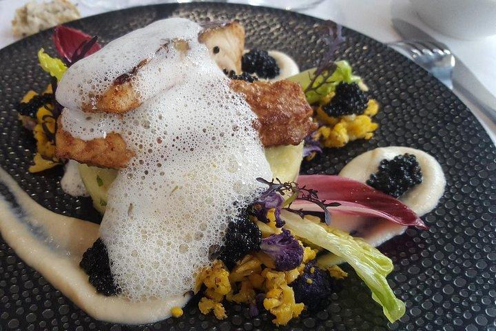 Sturgeon Fish-Farm Visit with Culinary Universe in Neuvic, Bergerac, FRANCIA