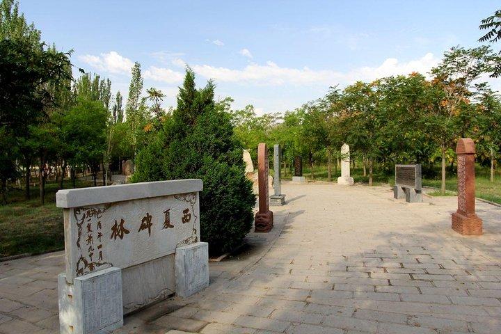 Yinchuan Private Day Tour to Western Xia Tombs and Rock Paintings of Helanshan, Yinchuan, CHINA