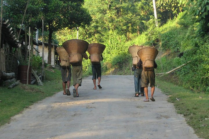 Private Tour: Archeology, Culture, Tribes, Old Buddhist Heritage and Beaches, Rajshahi, BANGLADES