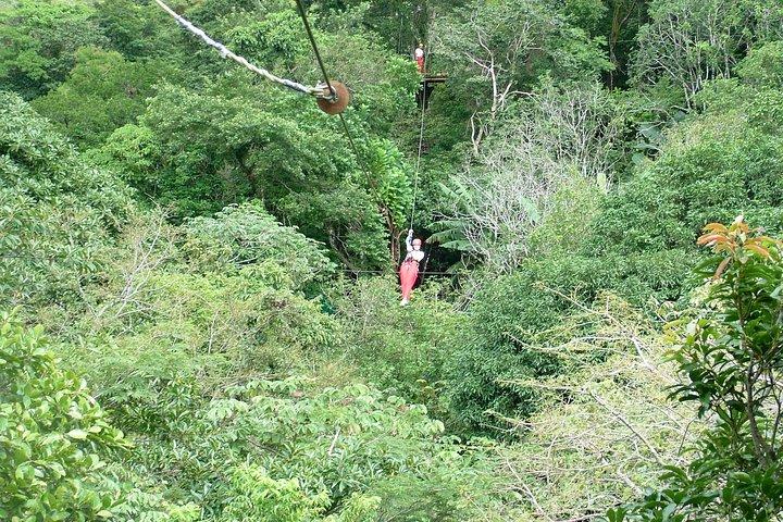 Curso de tirolina Superman en Adventure Park Costa Rica, ,