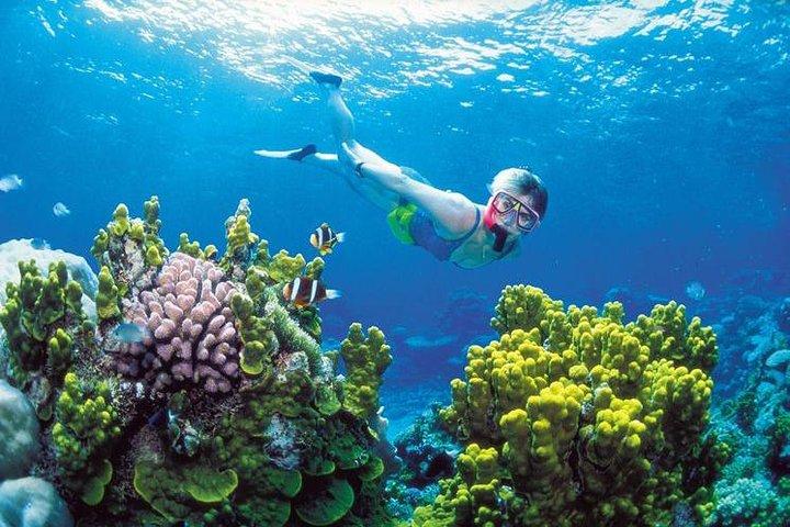 Small-Group and optional Cable Car Premium Snorkeling By Speedboat, Phu Quoc, VIETNAM