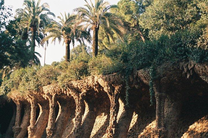 Skip the Line: Park Guell and La Sagrada Familia Guided Tour, Barcelona, Spain