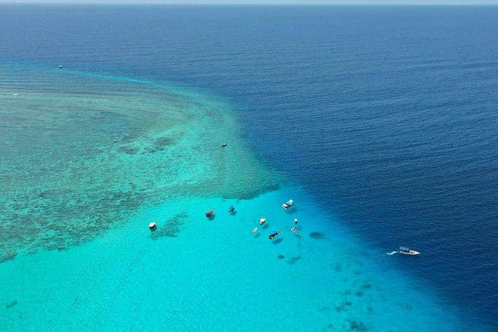Mnemba Island the Live Aquarium & Turtle House - Zanzibar, Dar es Salaam, TANZANIA