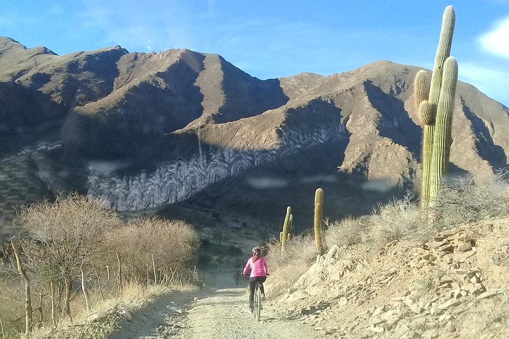 Paseos en Bicicletas, Cachi, ARGENTINA