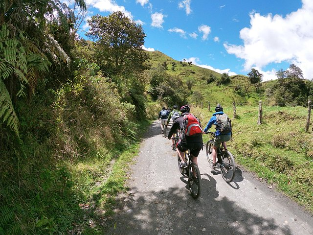 biking to the wax Palm Forest, Salento, COLOMBIA