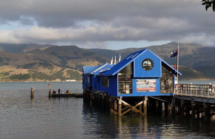 Akaroa-Christchurch Cruise Ship - Spanish Driver Guide / Chofer Guía en español, Akaroa, NUEVA ZELANDIA