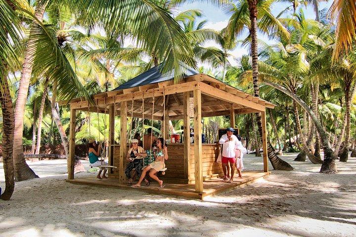 Sanoa Island Helicopter Tour from Punta Cana, Punta de Cana, REPUBLICA DOMINICANA