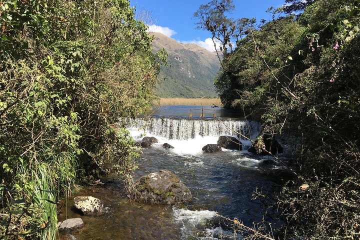 Excursión al Parque Nacional