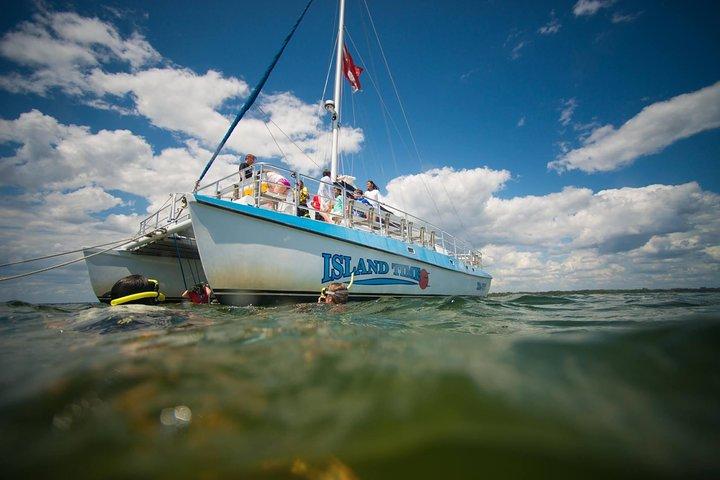 Shell Island Snorkel & Dolphin Catamaran Cruise with Island Time Sailing, Panama City Beach, FL, ESTADOS UNIDOS