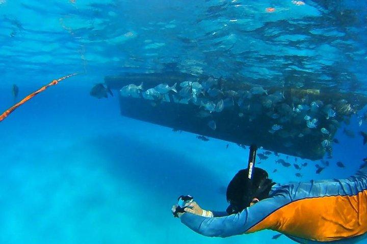 VIP Semi Submarino Manatí, San Andres, COLOMBIA