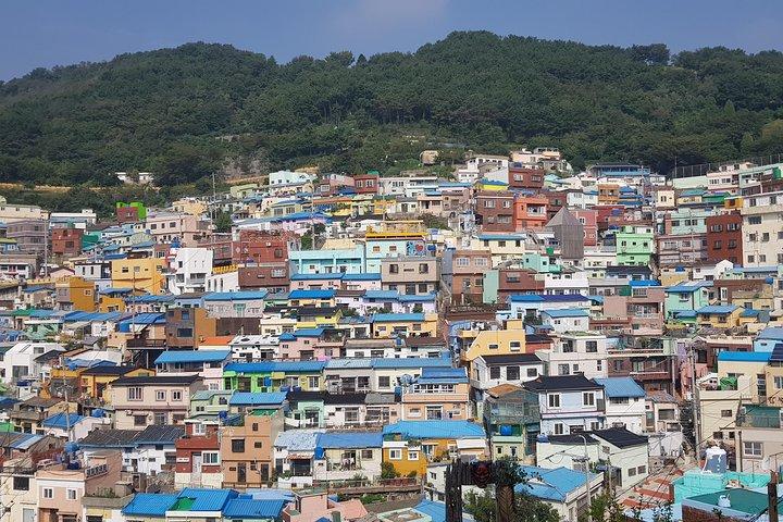 Busan TWO DAYS (History + Nature view + Culture + Local food), Busan, COREA DEL SUR