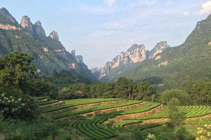 4 Days Zhangjiajie Avatar Panorama Tour & Activities( Hand-picked Featured Inn), Zhangjiajie, CHINA