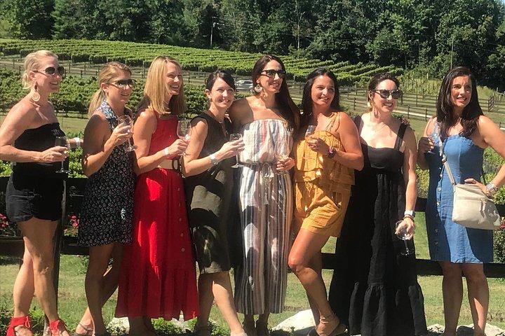 Explore Rabun County - Three Vineyard Wine Tasting Tour, Atlanta, GA, ESTADOS UNIDOS