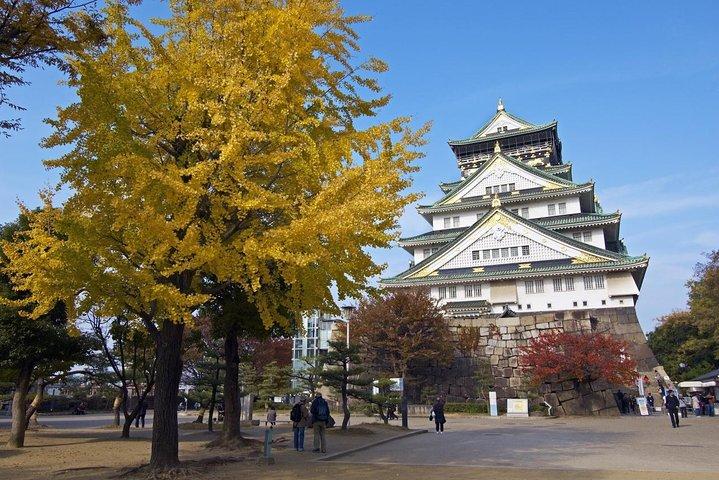 Private Departure Transfer: Osaka City to Osaka Itami Airport, Osaka, JAPÃO