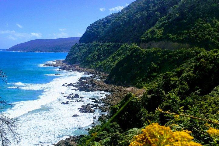 Great Ocean Road Adventure - Private Tour - Reverse, Melbourne, AUSTRALIA