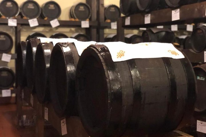 Food tour: Parmesan Cheese Balsamic Vinegar Red Wine, delicious lunch, Bolonia, ITALIA