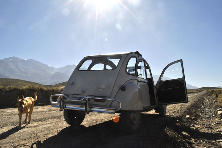 360º Tour: Vintage classic driving in the Uco Valley., Mendoza, ARGENTINA