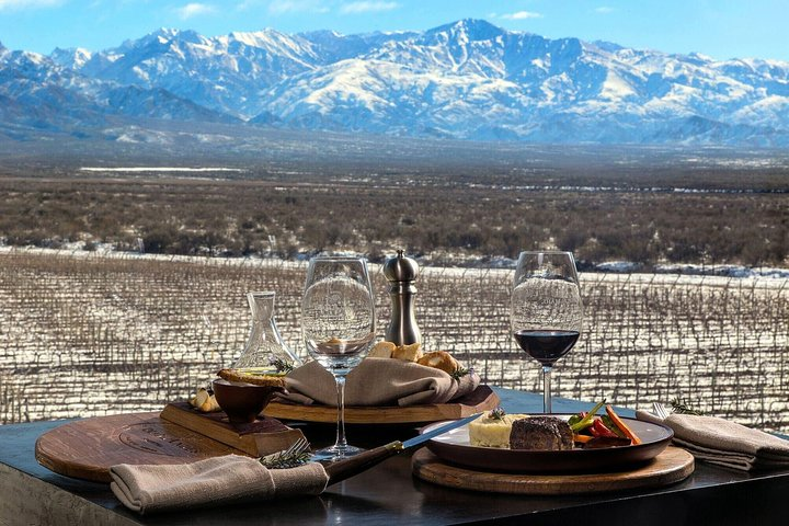 Visita privada a 3 bodegas con almuerzo en Maipu Mendoza, Mendoza, ARGENTINA