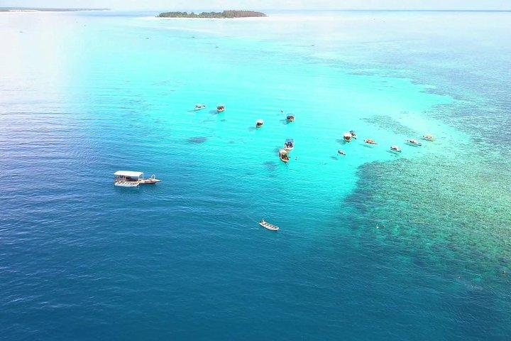 Mnemba Island the Live Aquarium & Turtle House - Zanzibar, Dar es Salaam, Tanzânia