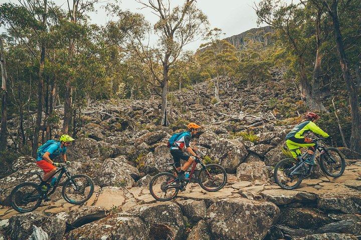 kunanyi/Mt Wellington Explorer Bus - One Way Tour, Hobart, AUSTRALIA