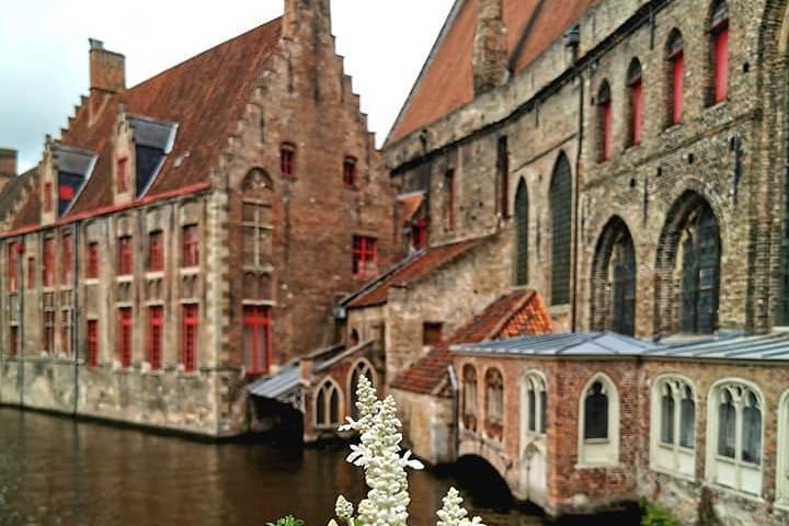 Private Bruges Walk (3h), Brujas, BELGICA