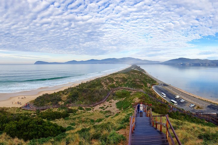 Bruny Island Day Tour, Includes Lunch and Exclusive Lighthouse Tour, ,