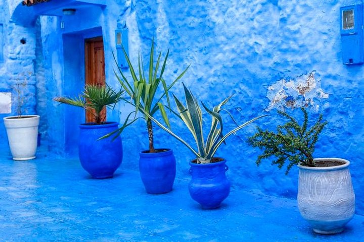 Day Trip To Chefchaouen , Small Group, Fez, MARROCOS
