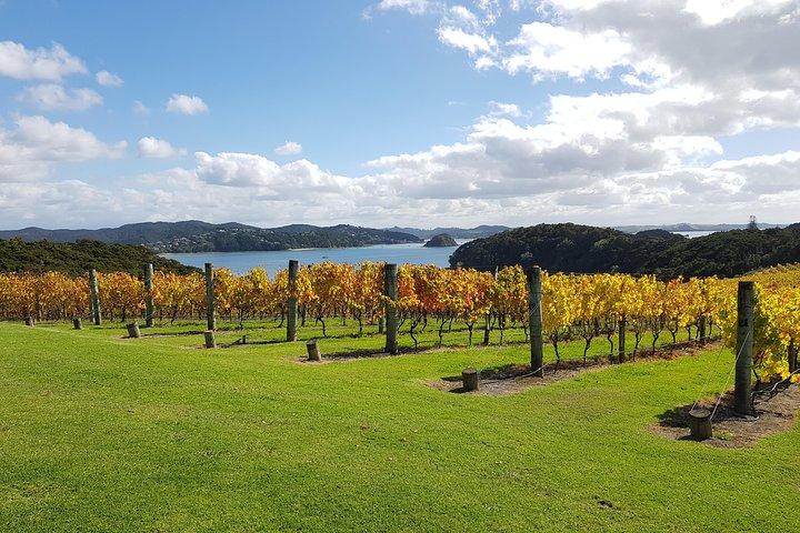 Private Afternoon Wine Tour of Russell, Bay of Islands, Bahia de Islas, NUEVA ZELANDIA