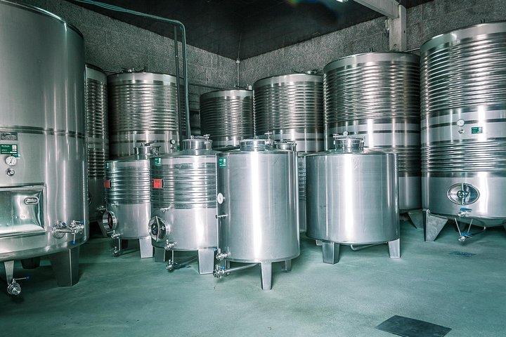 Albariño Private Wine Tour from Santiago de Compostela, Santiago de Compostela, ESPAÑA
