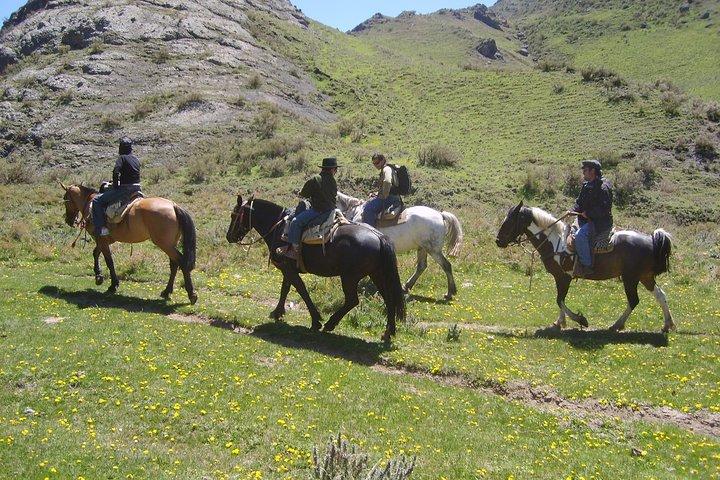 Paseo a caballo en Mendoza con asado argentino tradicional, Mendoza, ARGENTINA