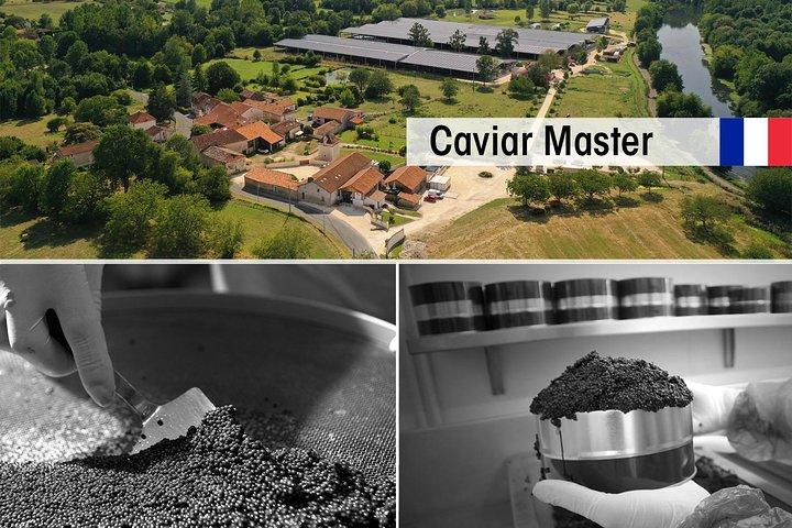 Visita a un criadero de esturiones con taller de caviar en Neuvic, Bergerac, FRANCIA