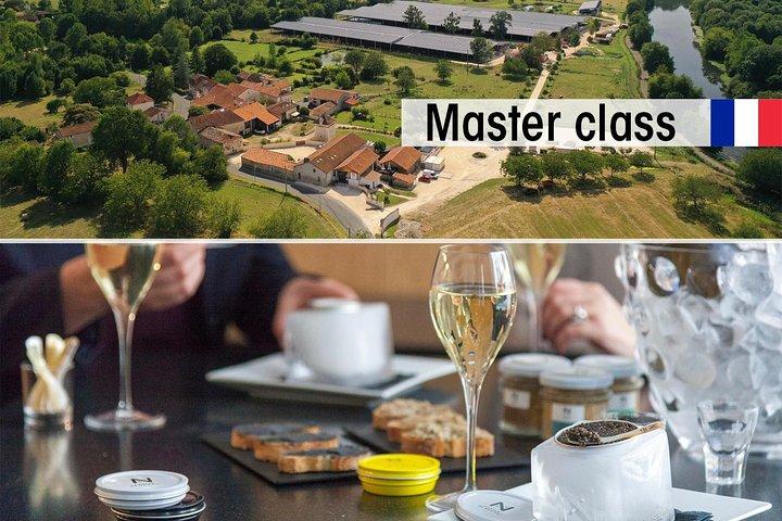 Sturgeon Fish-Farm Visit and Caviar Master Class Tasting in Neuvic, Bergerac, FRANCIA