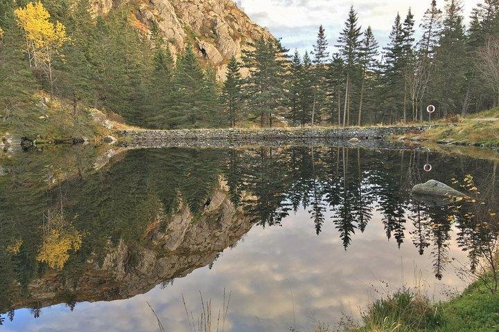 GUIDED TOUR: Hiking to Stoltzekleiven, Bergen, NORUEGA