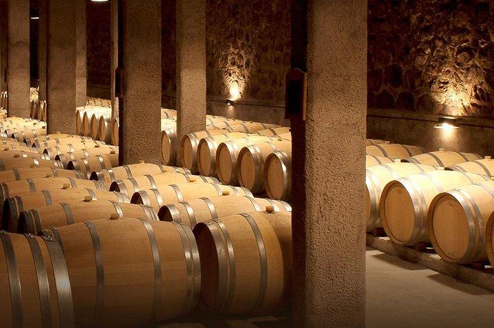 Sunday Wine Tasting Tour and Argentinien BBQ, Mendoza, ARGENTINA