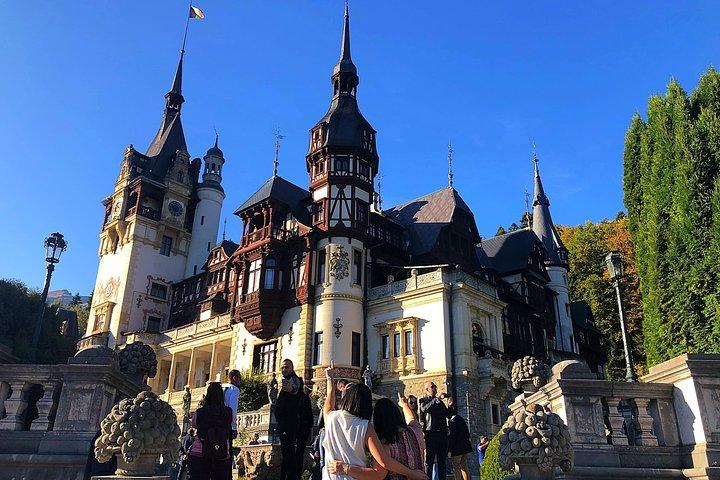 Bear Sanctuary, Bran (Dracula) Castle, Peles Castle From Brasov, Brasov, RUMANIA