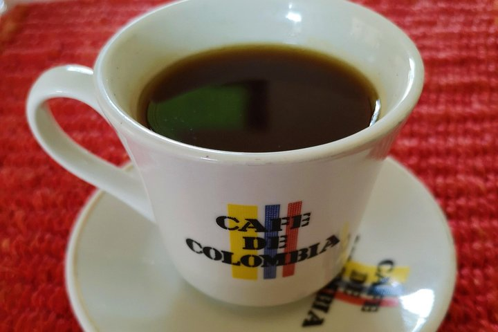 Private Tour - Coffee Tour (Cultivations), Bucaramanga, COLOMBIA