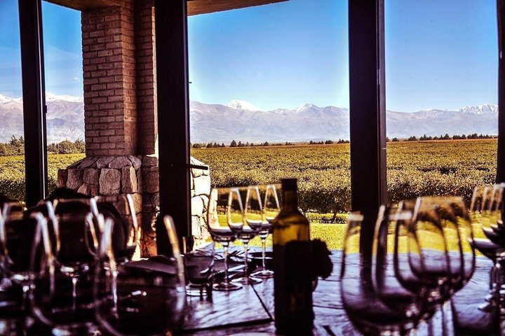 Mendoza wine tour. Visit 3 wineries and enjoy gourmet lunch, Mendoza, ARGENTINA