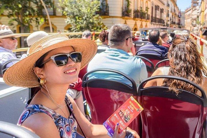 San Antonio Super Pass with Four Downtown Attractions, San Antonio, TX, ESTADOS UNIDOS