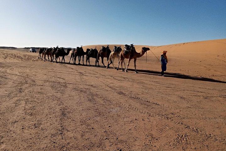 Overnight Desert Trips From Fez to Fez, Fez, MARRUECOS