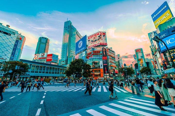Private Airport Transfer: Narita International Airport (NRT) to Tokyo, ,