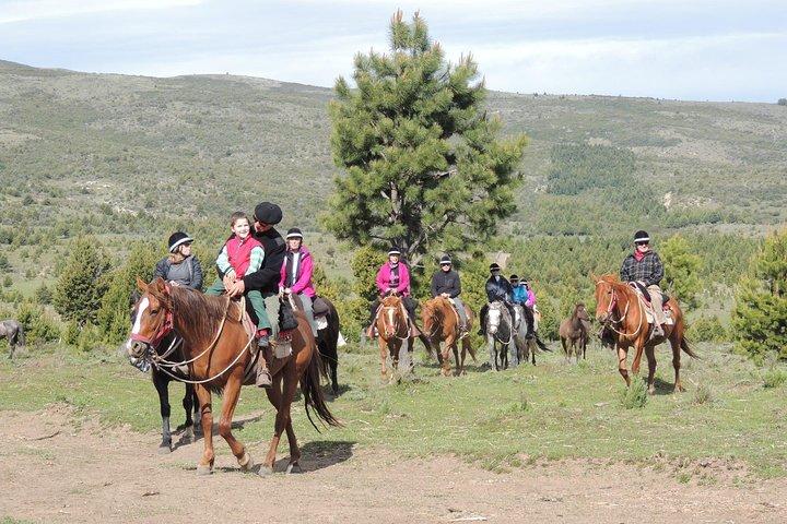 Horseback Riding Full Day with Asado in San Carlos de Bariloche, Argentina, Bariloche, ARGENTINA